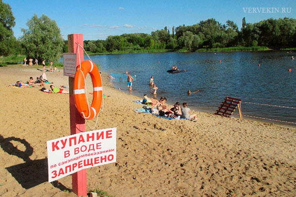 Пляж Боровое (Воронеж): купание в воде запрещено