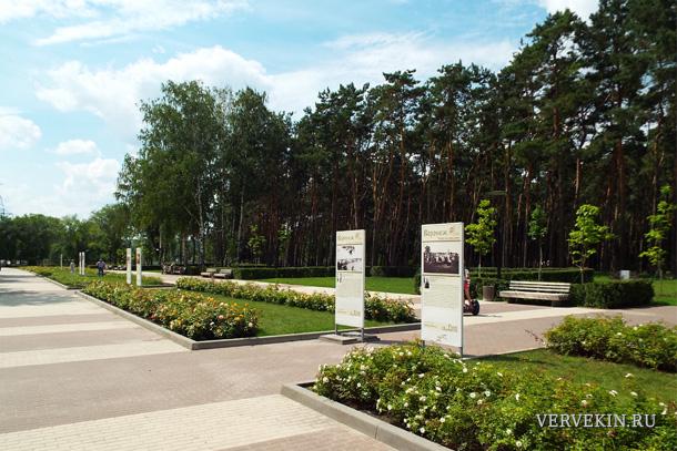 park-alye-parusa-voronezh-05