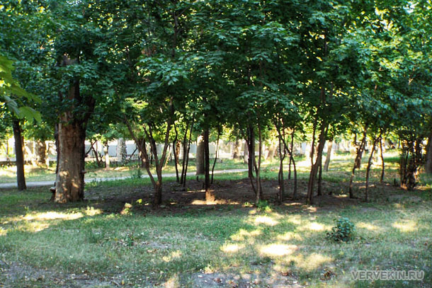 park-aviastroitelej-voronezhskij-zoopark-26