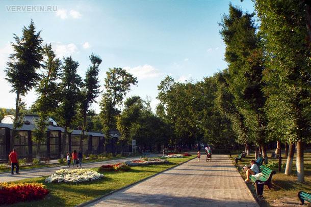 park-aviastroitelej-voronezhskij-zoopark-33