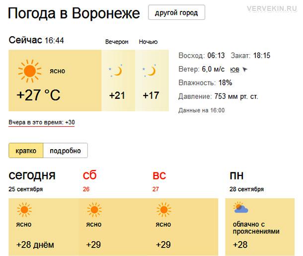 anomalnaya-zhara-sentyabr-voronezh-02