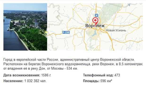 Воронеж в поиске Яндекса