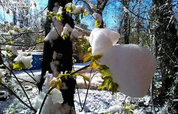 voronezh-zima-vernulas-02