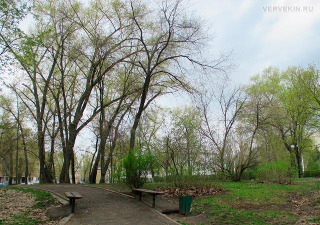 Парк Патриотов: аллея, ведущая к ул. Ленинградской