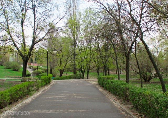 Парк Патриотов: центральная аллея
