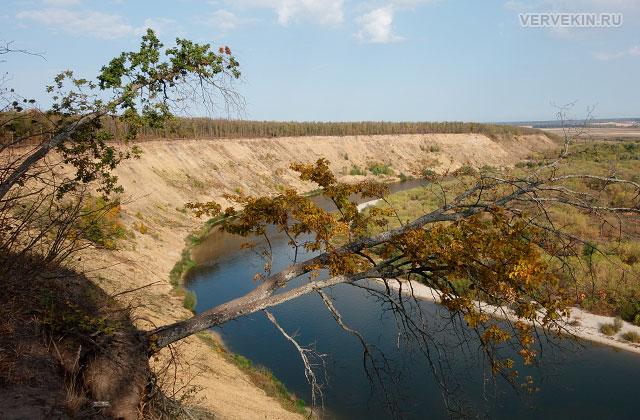 Осыпающийся высокий берег Дона в Кривоборье