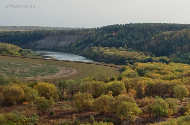Вид на пологий берег реки Дон в Кривоборье