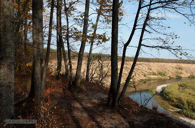 Урочище Кривоборье: лиственный лес на высоком берегу