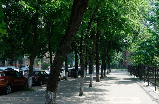 Воронеж: тенистая улица Карла Маркса