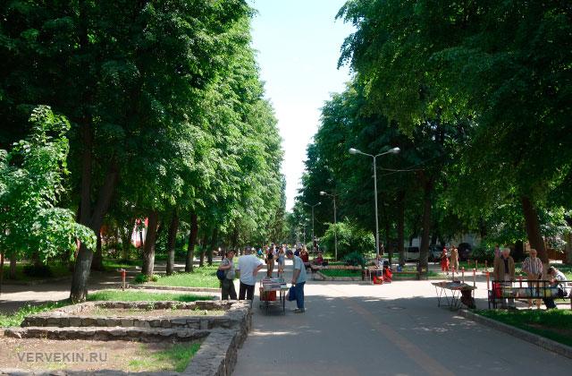 Воронеж: улица Карла Маркса, стихийные торговые точки